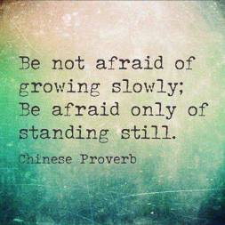 Be not affraid of growing slowly 151214